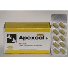 Apexcol+ EXPORT