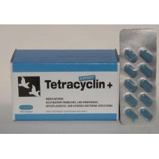 Tetracyclin+ EXPORT